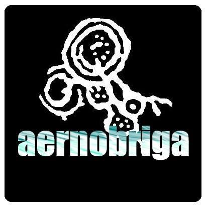 Aernobriga, blog sobre patrimonio de Galicia e Bueu
